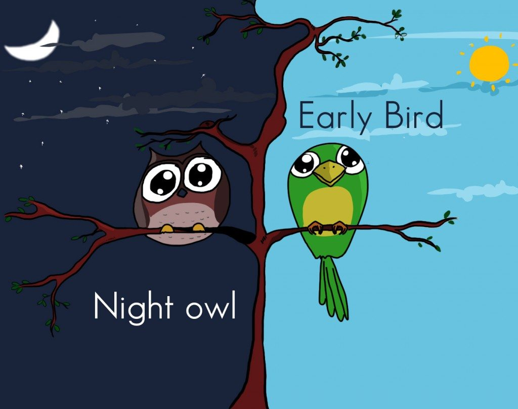 Night Owl Vs Early Bird Who Is Better