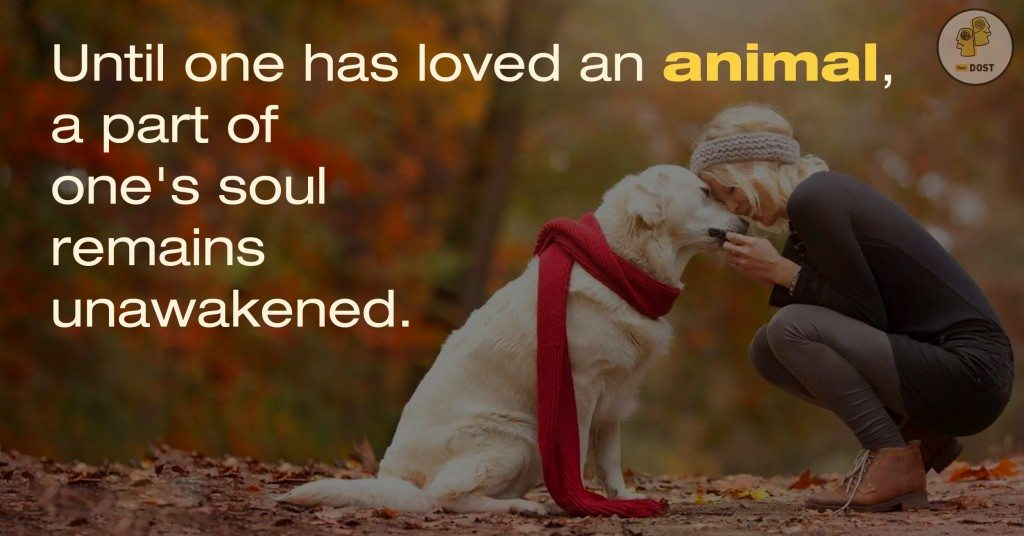 Quotes: Animals Are Lovable
