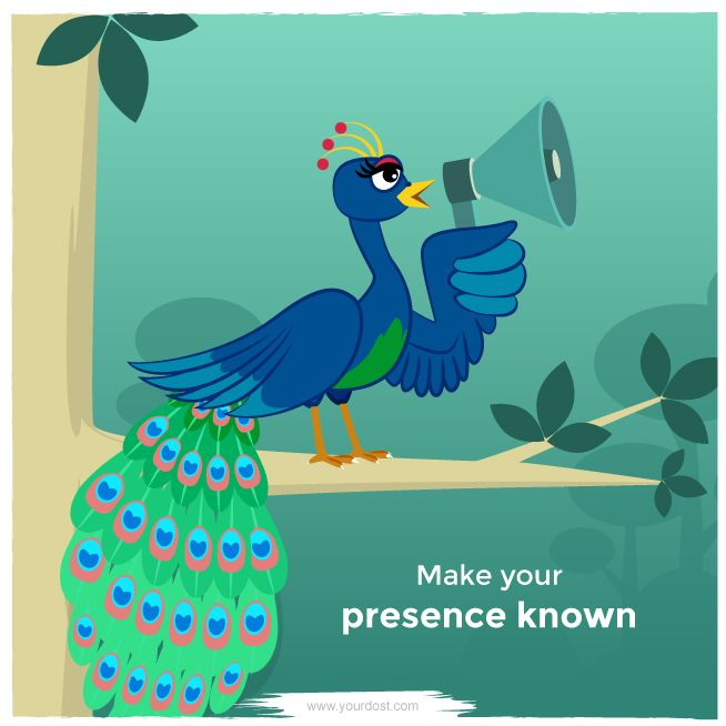 Along with the beautiful feathers, peacocks have a loud distinctive sound which makes them stand out.