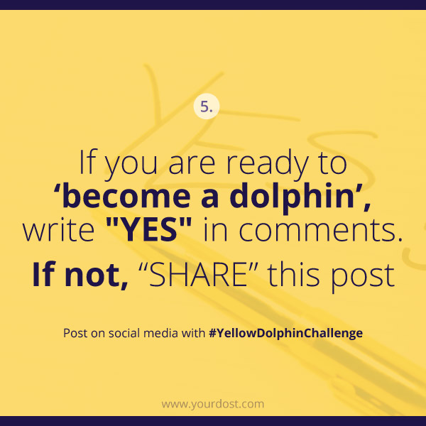 yellowdolpinchallenge-task5