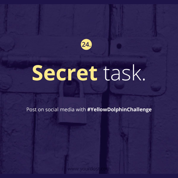 yellowdolpinchallenge-task24