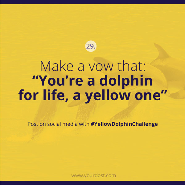 yellowdolpinchallenge-task29