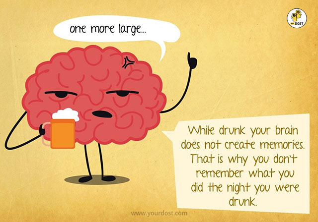 Effect of alcohol on the brain